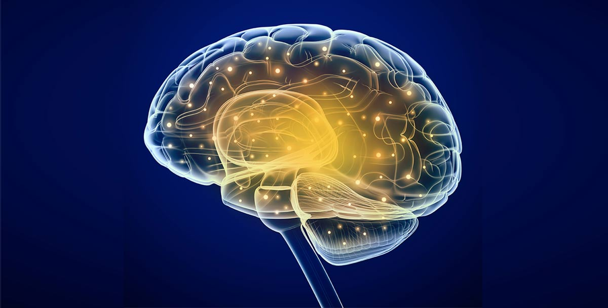 Forensic Neuropsychological Testing and Evaluation