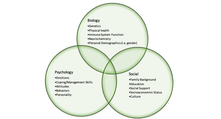 Health Psychology Service Image