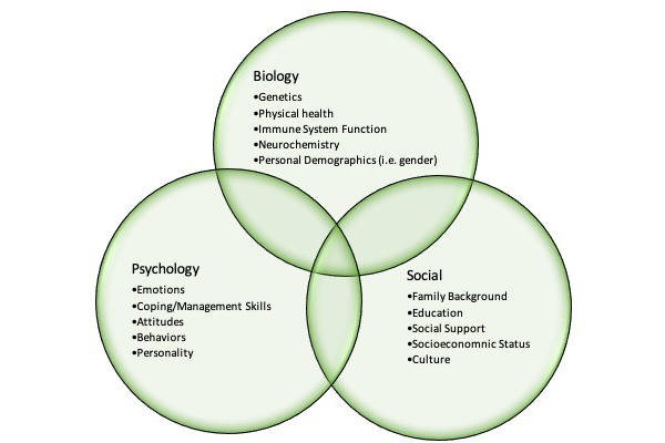 Health Psychology Service2