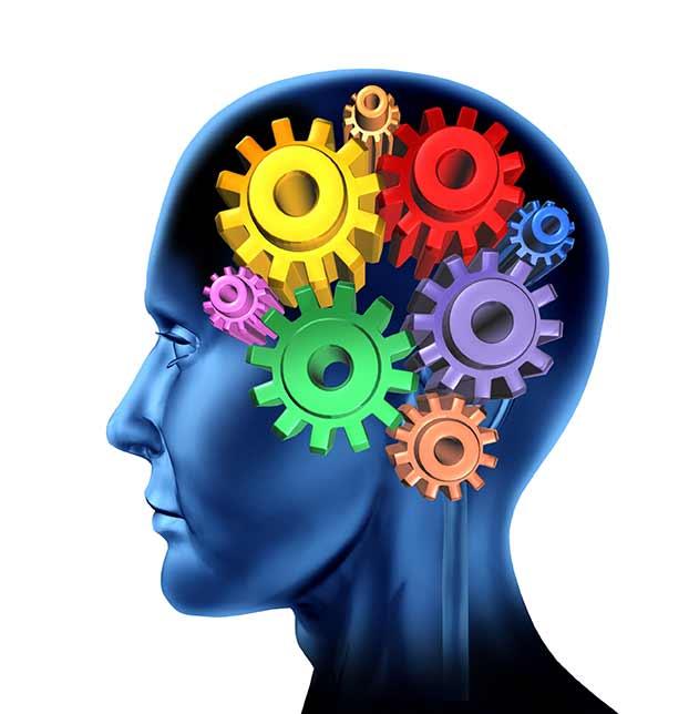 Neuropsychology Notes Image